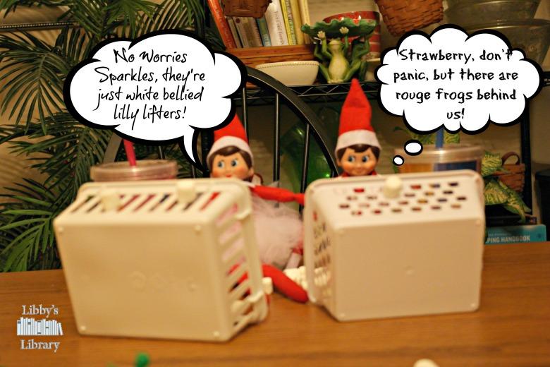 Marshmallow War