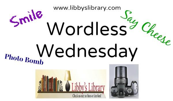 Wordless Wednesday