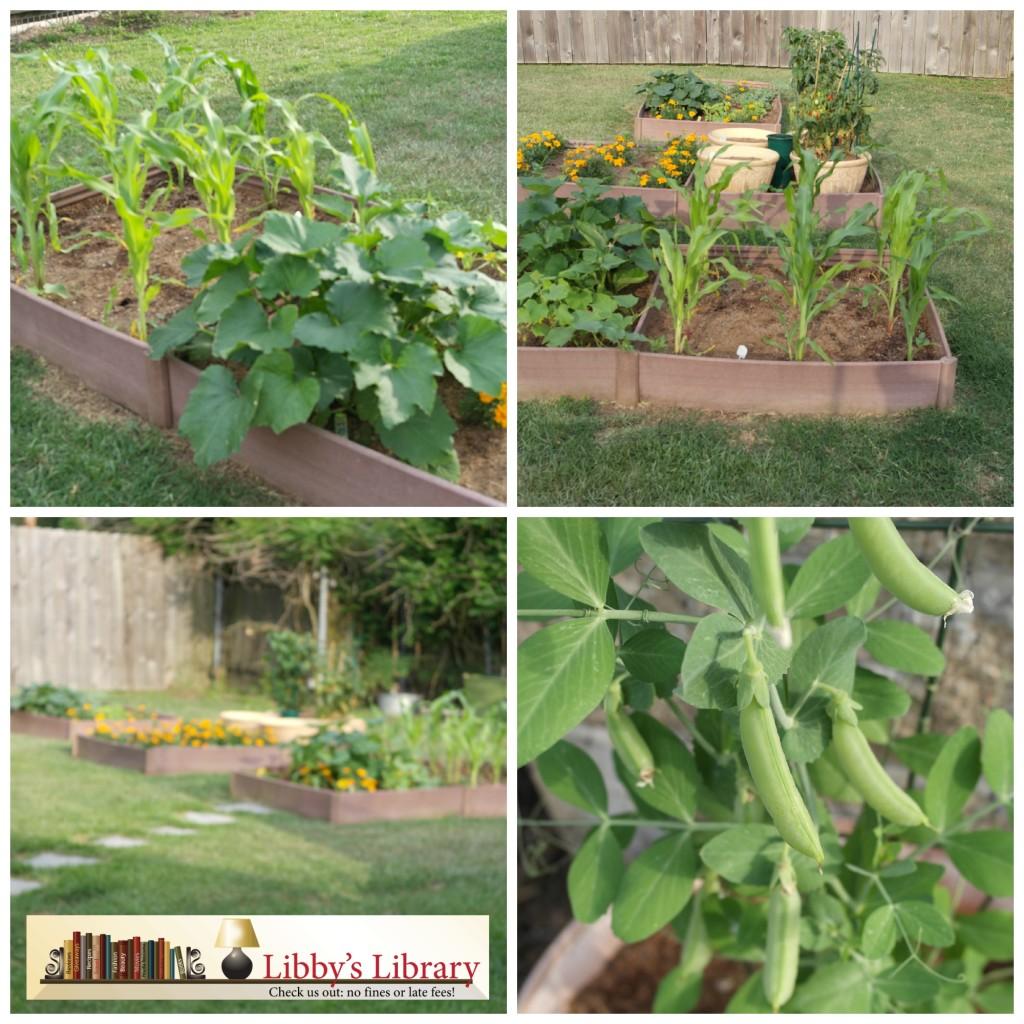 Garden Collage 5 9
