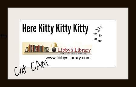 Here Kitty Kitty Kitty