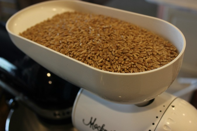Wheat on Its Way to Bread