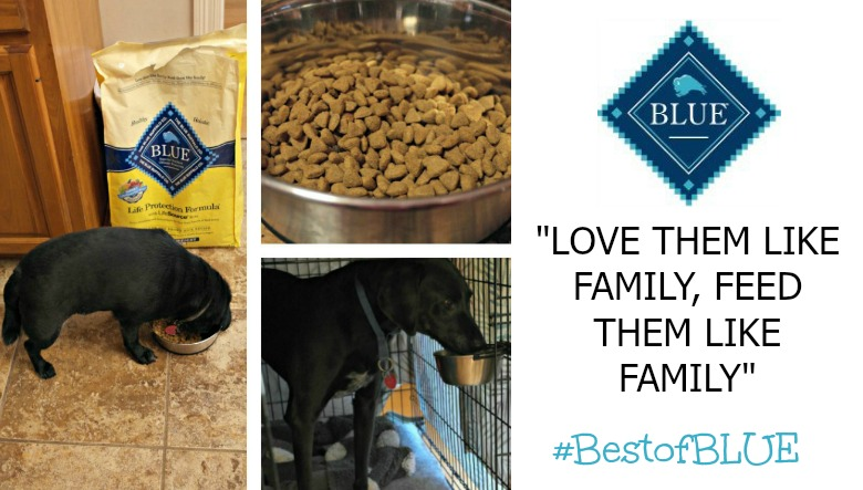 #BestofBLUE Blue Buffalo™ Food for Your Furbabies