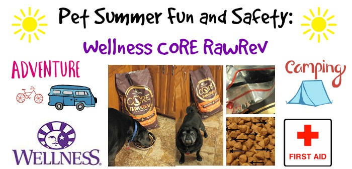 Pet Summer Fun and Safety: Wellness CORE RawRev