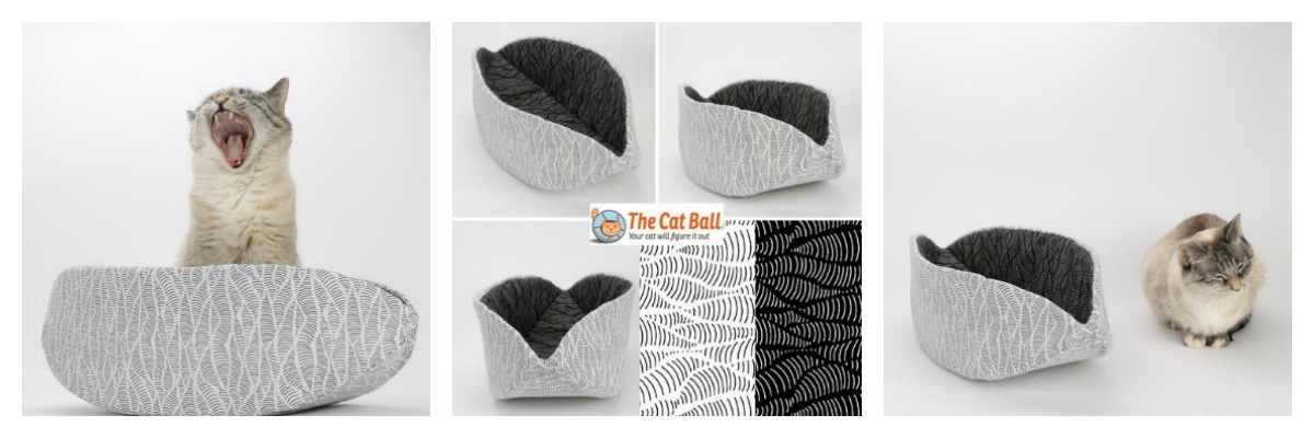 Koo Koo Kachoo: The Cat Ball and Cat Canoe