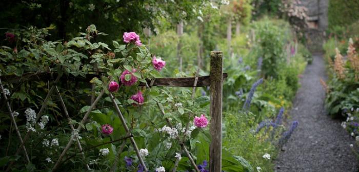 Your Garden – Year Round