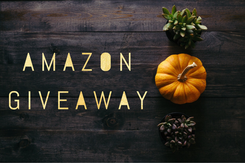 November Amazon Giveaway