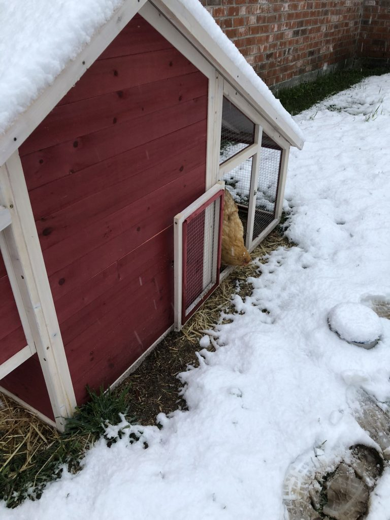 It's Been Cold on the Funny Farm