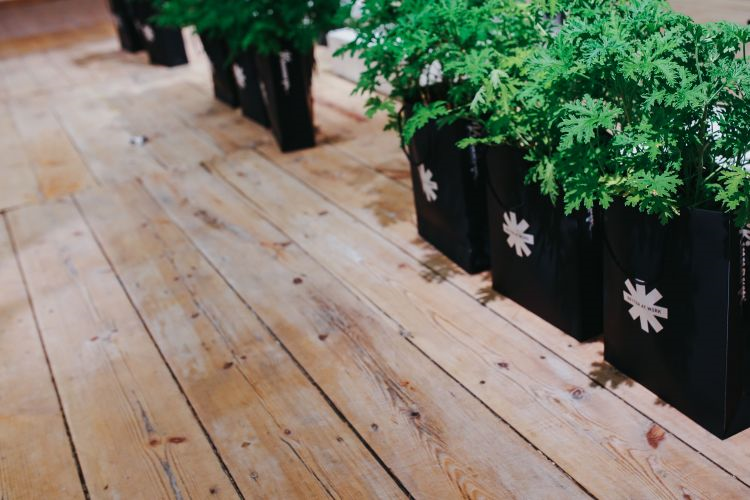 Is It Time For An Outdoor Overhaul? Simple, Affordable Ways To Create A Gorgeous Garden