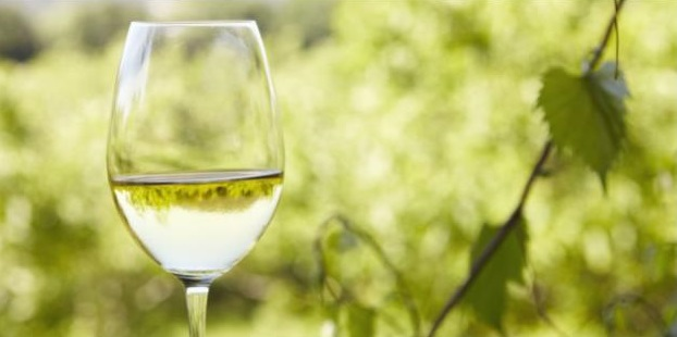 Choose Italian Pinot Grigio As Your Go-To White