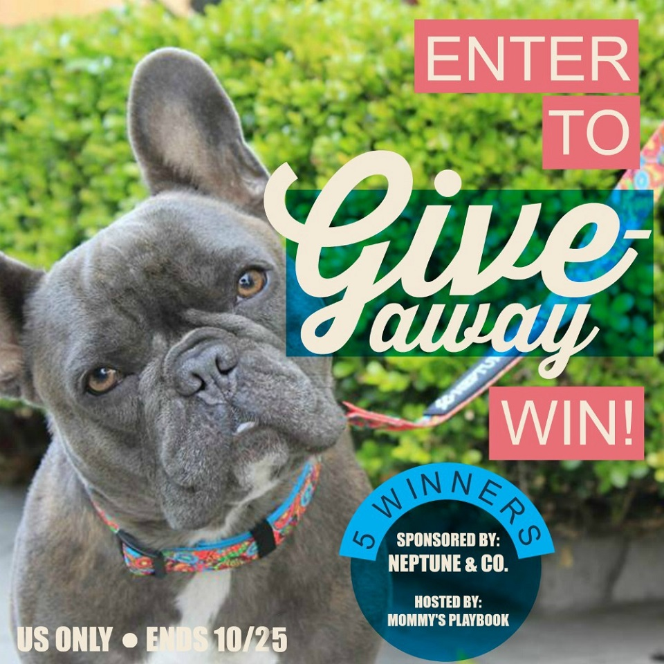 Neptune & Co. Giveaway Extravaganza