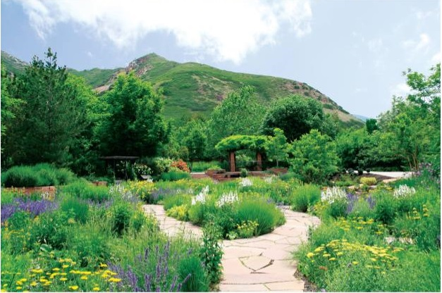 5 Things You Didn't Know You Could Do in Salt Lake City