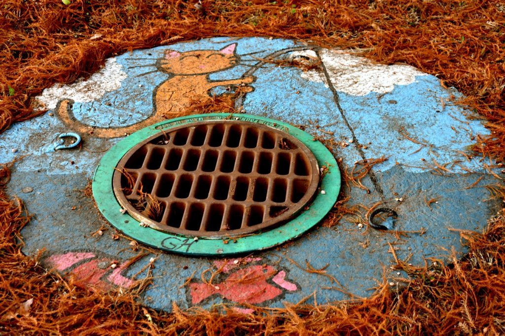 Tell-Tale Signs of a Blocked Sewer