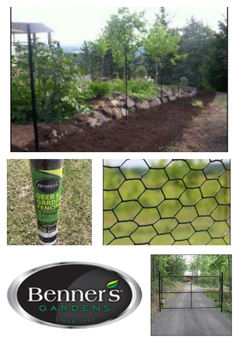 Protect Your Spring Garden with Fencing from Benner's Gardens