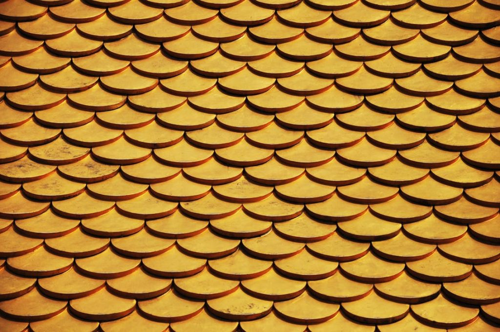Protect Your Home This Autumn With These Roof Maintenance Tips