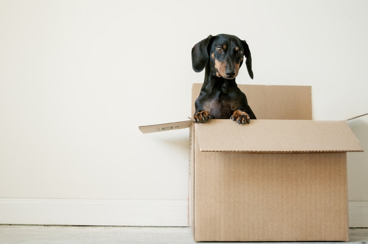 How To Make Sure You Don't Leave Anything Behind When Moving