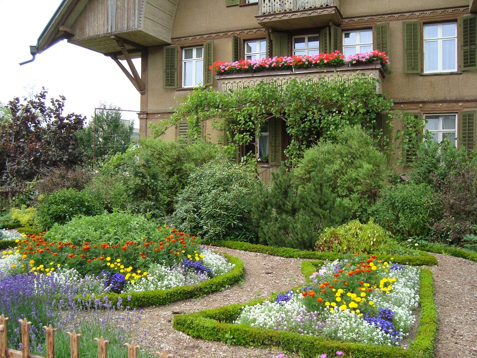 How to Improve the Health & Vibrancy of Your Garden