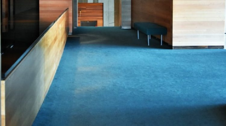 Make Your Home Stylish on a Budget With Concrete Stained Floors