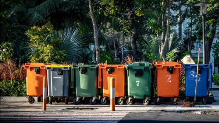 A row of colorful garbage bins - Hire a Trash Removal Company to Keep Your House Clean and Healthy