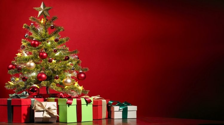 Christmas Tree and Brightly Wrapped Gifts - Gift