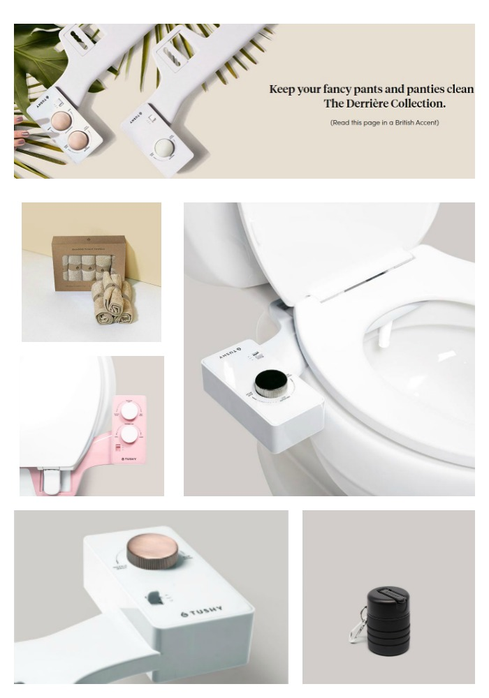 Bidets and Products from Tushy - Making a House a Home