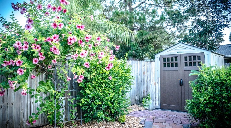 Lovely Backyard with Garden Shed