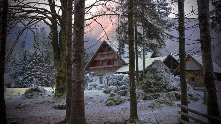 Home with yard, big trees, firewood, and snow - Winter