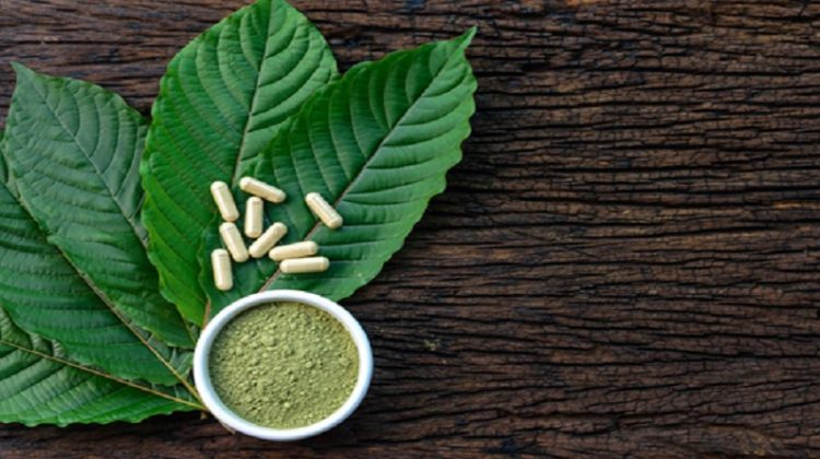 Kratom - Health Benefits of Kratom