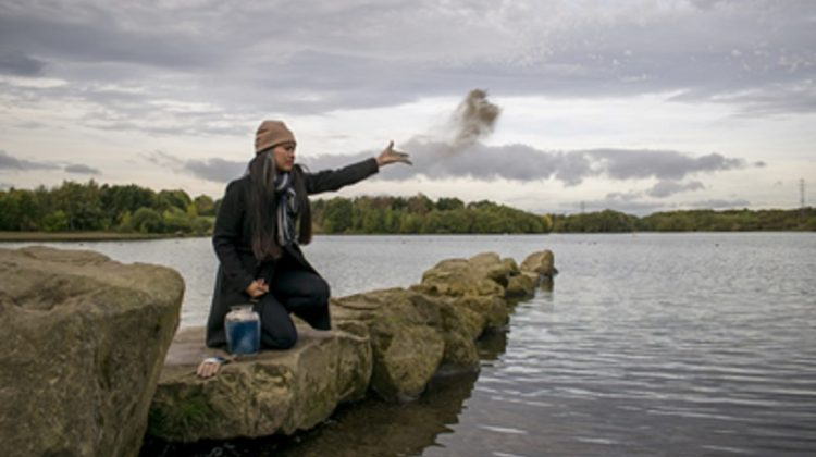 Your Guide to Scattering Ashes Meaningfully