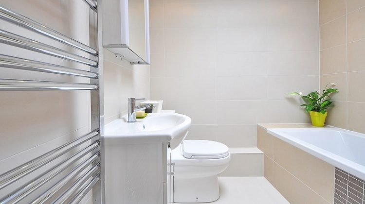 Sleek White Bathroom - 5 Types of Toilets to Choose From: Which One Should You Install?