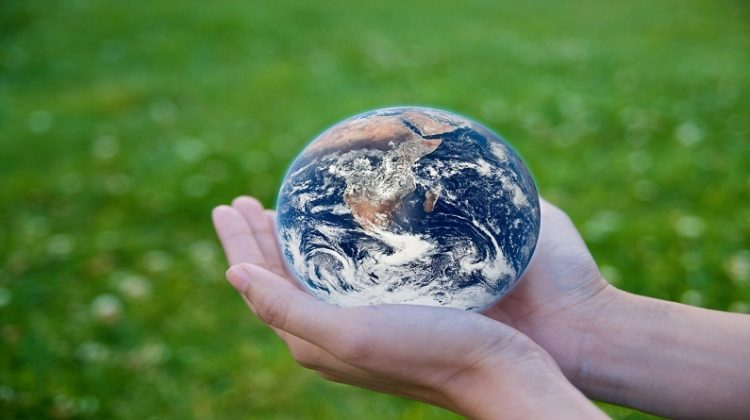 Hands holding sphere that looks like the earth - Famous Environmentalists: 5 Environmental Activists You Need to Know
