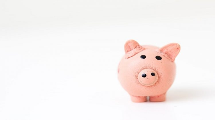 Piggy Bank - Business Growth in 2020