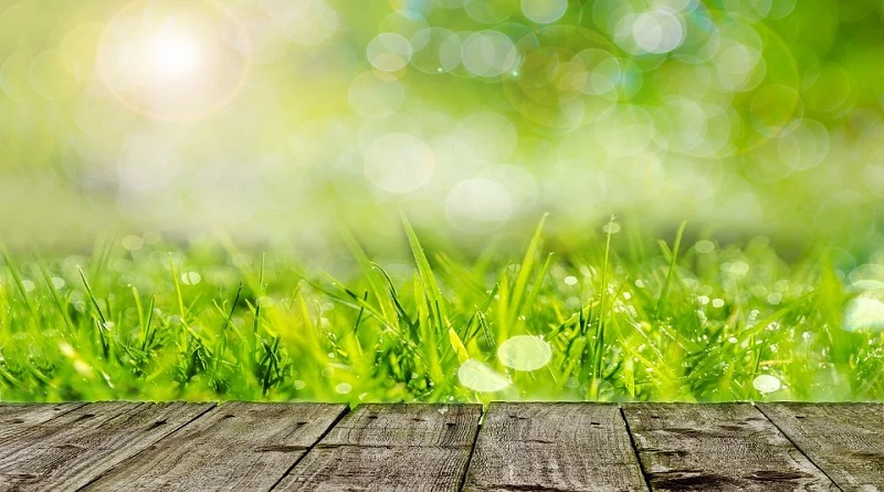 Deck and Grass - Giving Your Garden A Pre-Summer Makeover