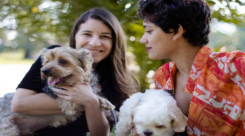 Family Puppy