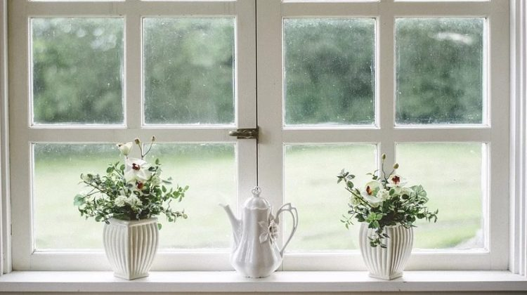 White Wood Framed Window with 2 Plants and a Teapot on the Windowsill - Breathe Life Into Your Home With New Windows
