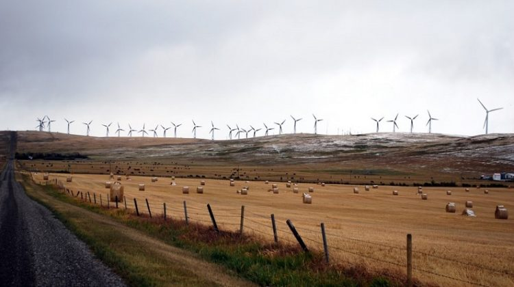 Wind farm - Be More Environmentally Friendly