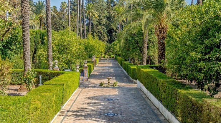 """Green Wall"" in Sevilla - Seven Ways You Can Give Your Landscaping A Facelift"