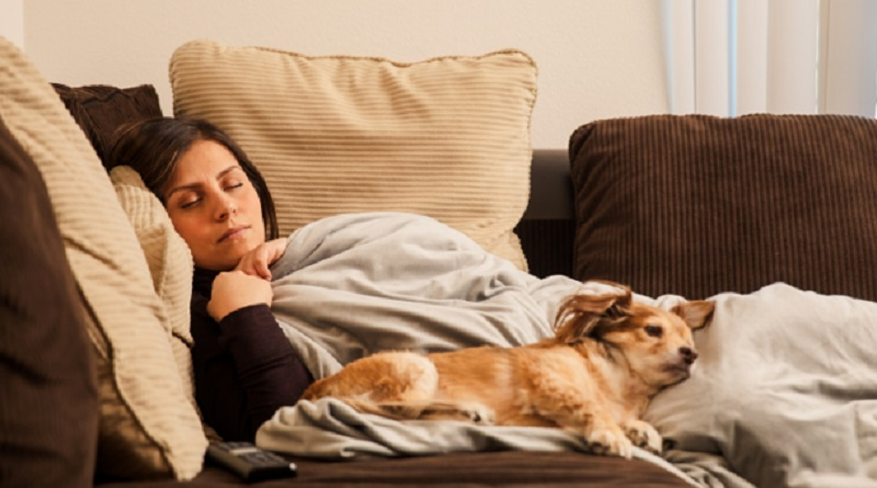 Woman Sleeping on Sofa with Weighted Blanket and Dog - Weighted Blanket