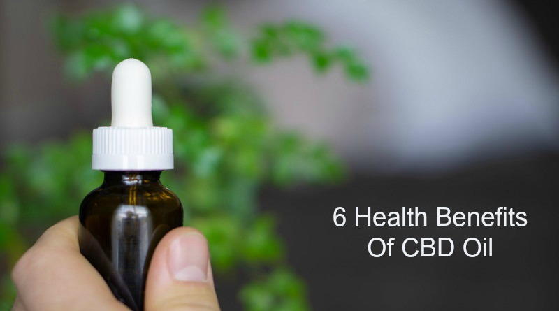 Hand Holding Dropper Bottle - Health Benefits of CBD Oil