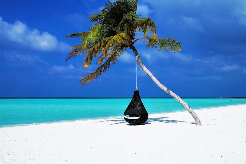 Single Palm Tree with a swing hammock on white sandy beach with turquoise water and dark blue sky - vacation or staycation