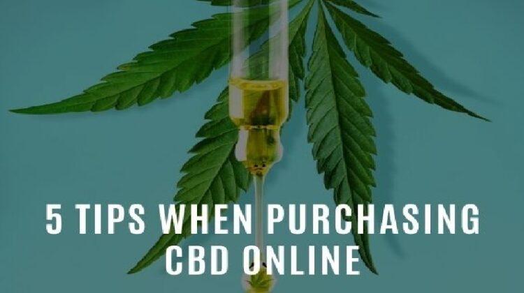 Marijuana Plant and CBD Oil - Purchasing CBD Online