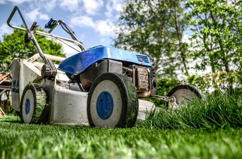 Blue and White Lawn Mower - Maintenance Tips for your Lawn