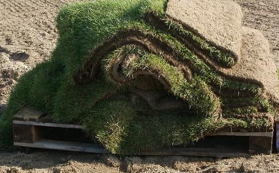 Sod - Lawn Installation And Sod Installation