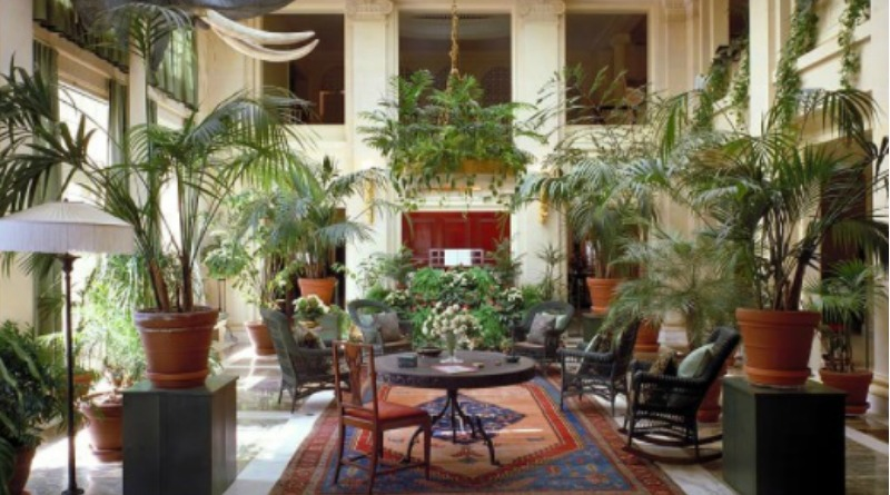 Beautiful large living room with lots of plants -