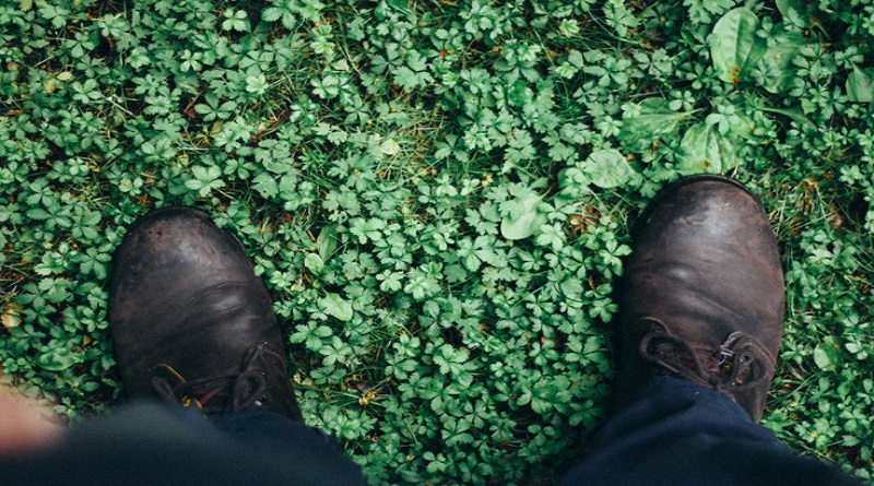 Feet standing in grass filled with weeds - Weed Control Services