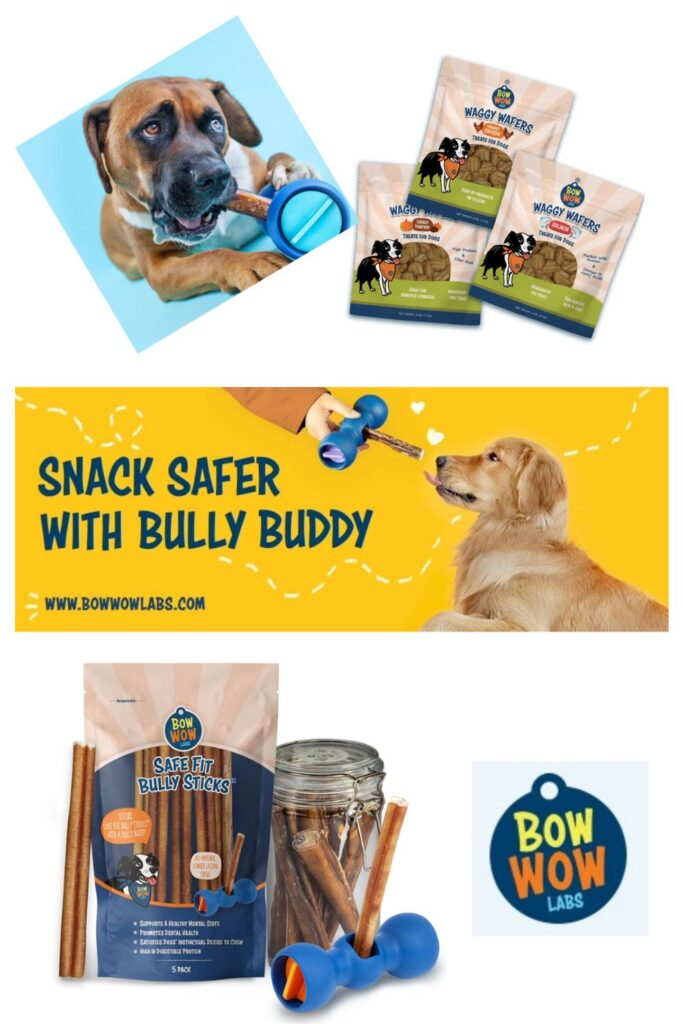 Bow Wow Labs 2020 Holiday Gift Ideas and Buying Guide: Pets