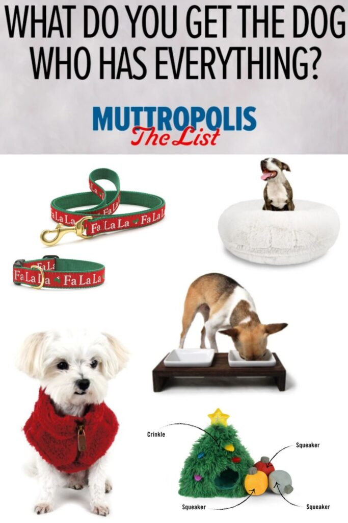 Muttropolis 2020 Holiday Gift Ideas and Buying Guide: Pets