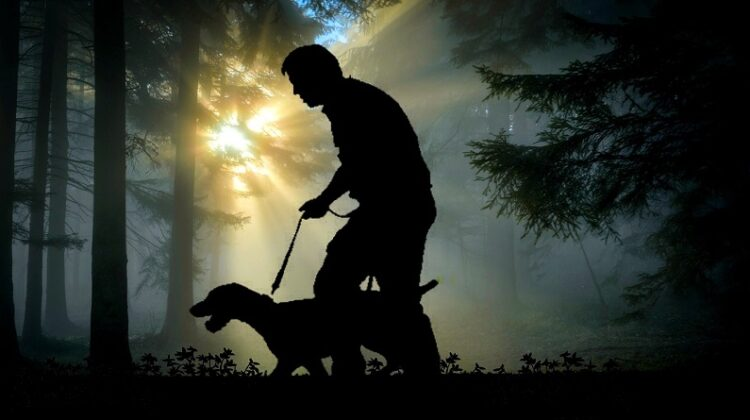 Silhouette of Man Walking a Dog in Woods