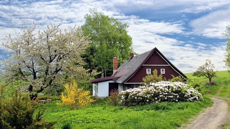 Small Cottage in a Meadow Care For Your Home