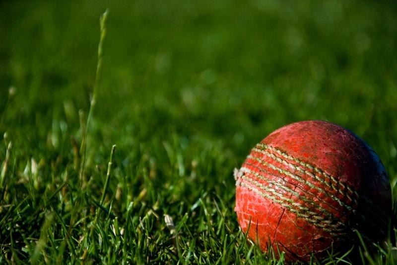 Kayo Sports Cricket Ball in Grass