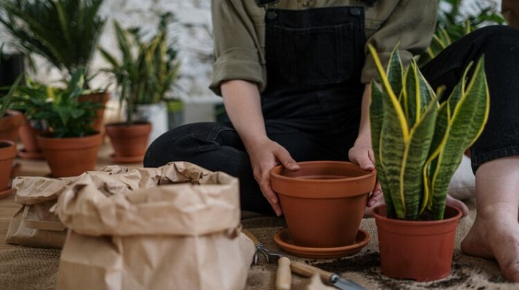 Make Your Garden Beautiful Woman in overalls sitting on floor potting plants